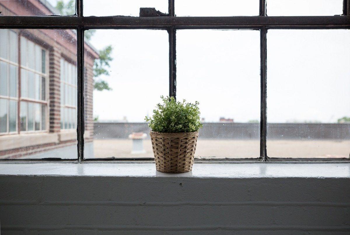 window film 3m new york